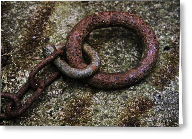 Chain Ring Greeting Cards - O Greeting Card by Odd Jeppesen