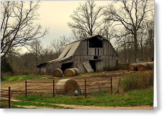 Oak Barn Greeting Card by Marty Koch