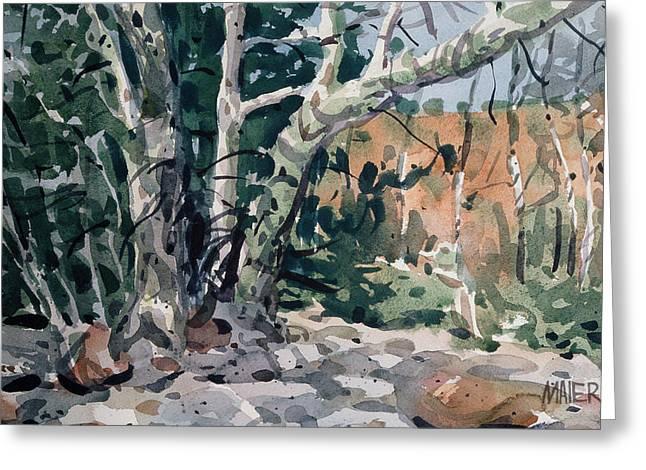 Oak Creek Paintings Greeting Cards - Oak Creek Canyon Greeting Card by Donald Maier