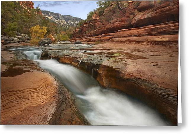 Animals and Earth - Greeting Cards - Oak Creek In Slide Rock State Park Greeting Card by Tim Fitzharris