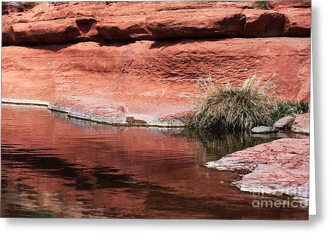 Oak Creek Greeting Cards - Oak Creek Greeting Card by John Rizzuto