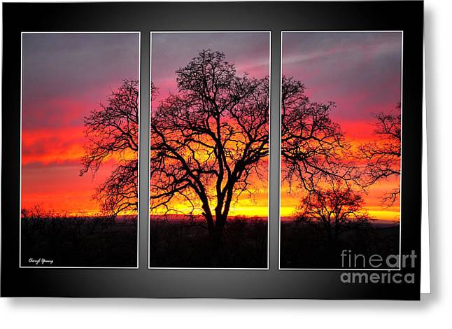 Oak Silhouette Tryptych 1 Greeting Card by Cheryl Young