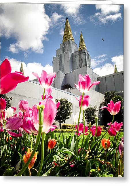 The Church Greeting Cards - Oakland Pink Tulips Greeting Card by La Rae  Roberts