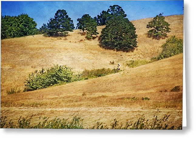 Wildlife Refuge. Digital Art Greeting Cards - Oaks on Grassy Hill Greeting Card by Bonnie Bruno