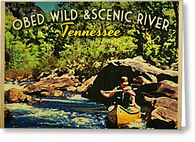Tennessee River Greeting Cards - Obed Wild Scenic River Tennessee  Greeting Card by Flo Karp