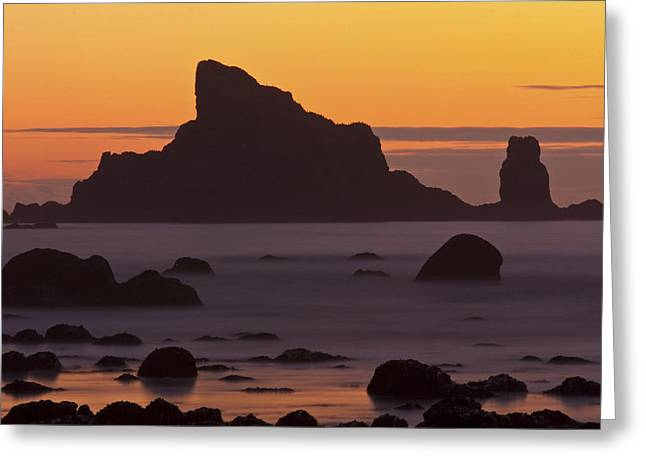 Olympic National Park Greeting Cards - Occasion Of Mercy Greeting Card by Mark Kiver