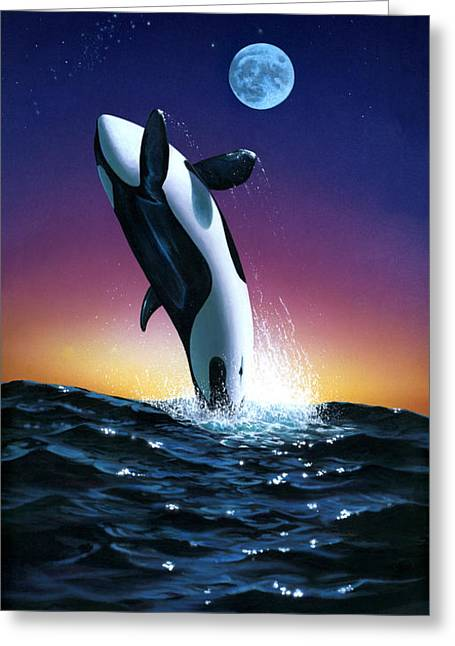 Whale Photographs Greeting Cards - Ocean Leap Greeting Card by MGL Studio - Chris Hiett