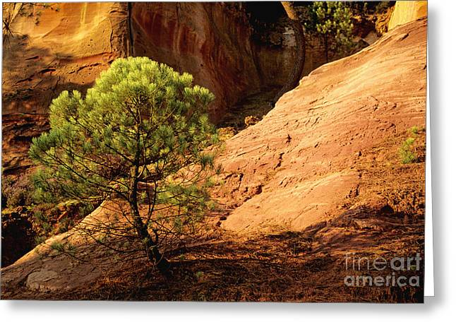 South Of France Greeting Cards - Ocher. Roussillon. Luberon Greeting Card by Bernard Jaubert