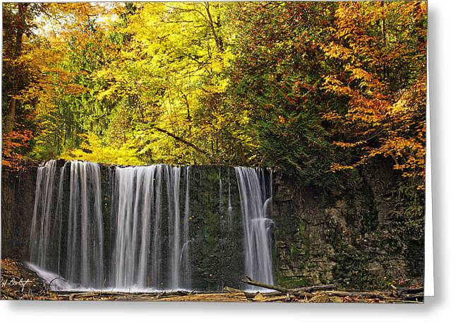 Escarpment Greeting Cards - October at Hoggs Falls Greeting Card by Phill  Doherty