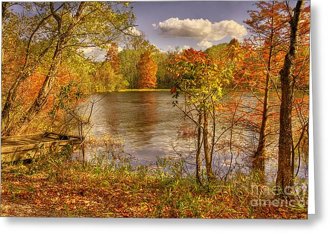 Reflections Of Trees In River Greeting Cards - October Creek Greeting Card by Cheryl Davis
