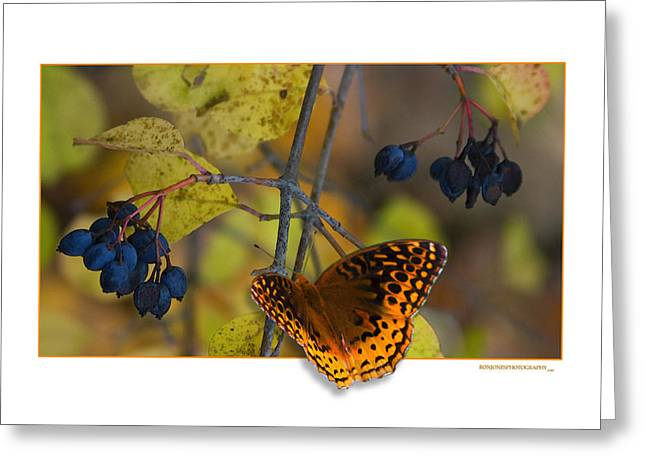 October Delight Greeting Card by Ron Jones