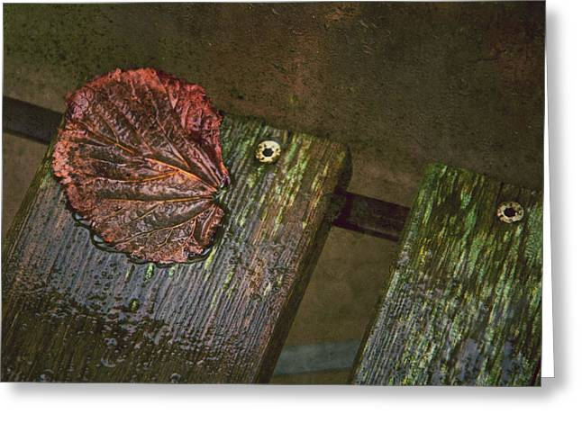 Fallen Leaf Greeting Cards - October Portrait Greeting Card by Odd Jeppesen