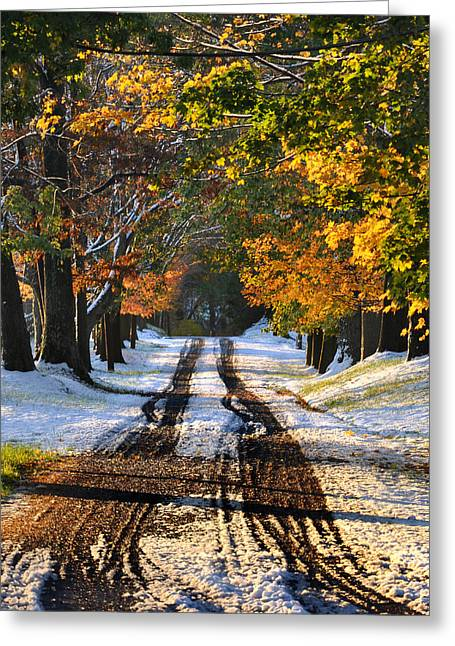 Country Dirt Roads Digital Greeting Cards - October Road Greeting Card by Bill Cannon
