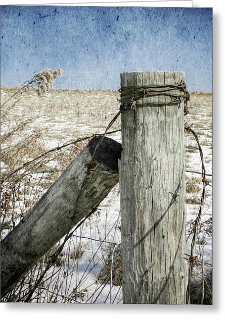 Of Wood And Wire Greeting Card by Christine Annas