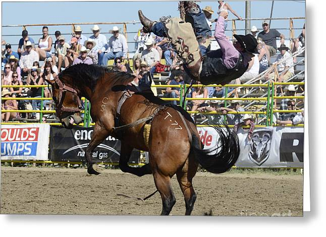 Western Life Greeting Cards - Rodeo Off In A Flash Greeting Card by Bob Christopher