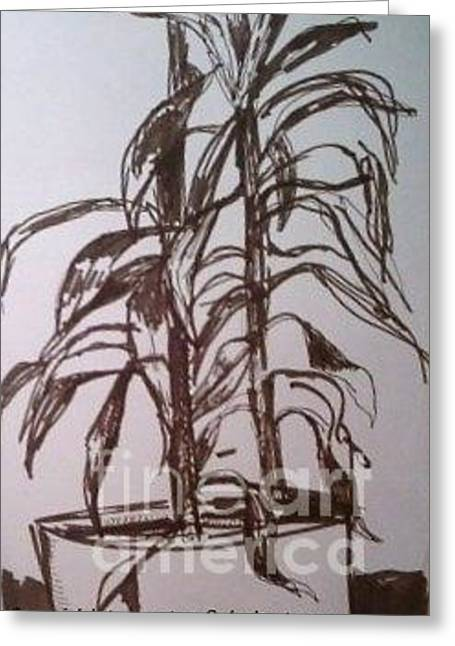 """""""indoor"""" Still Life Drawings Greeting Cards - Office Plant Greeting Card by Jamey Balester"""
