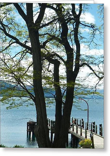Farm Greeting Cards - Oh Wondrous Tree Greeting Card by Therese Alcorn