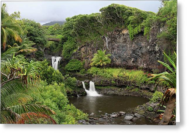 Lush Green Greeting Cards - Oheo Gulch Greeting Card by Pierre Leclerc Photography