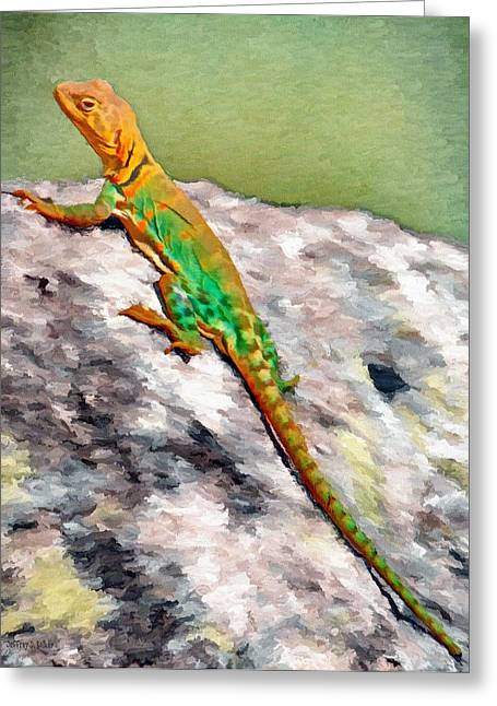 Oklahoma Collared Lizard Greeting Card by Jeff Kolker