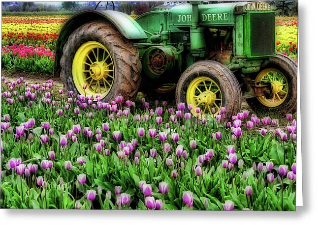 Tractor Tire Greeting Cards - Old and New Greeting Card by Bonnie Bruno