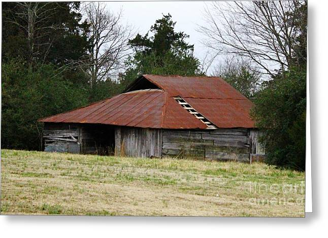Tin Roof Greeting Cards - Old Barn Greeting Card by David Rachow