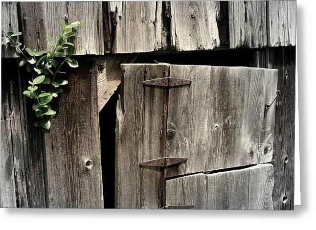 Barn Door Greeting Cards - Old Barn Door Greeting Card by Lois Lepisto