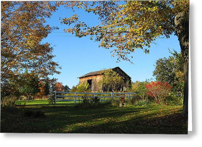 Old barn during fall Greeting Card by Leontine Vandermeer
