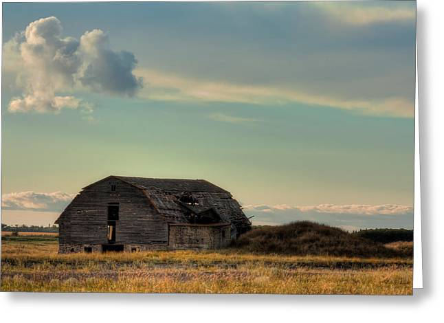 Old Crumbling Barn Greeting Cards - Old Barn In A Field Greeting Card by Matt Dobson