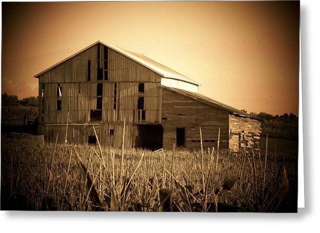Rural Indiana Greeting Cards - Old Barn in Indiana Greeting Card by Joyce Kimble Smith