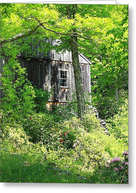 Sara Walsh Greeting Cards - Old Barn Greeting Card by Sara Walsh