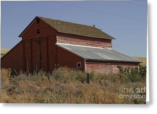 Tin Roof Greeting Cards - Old Barn Greeting Card by Robert  Torkomian