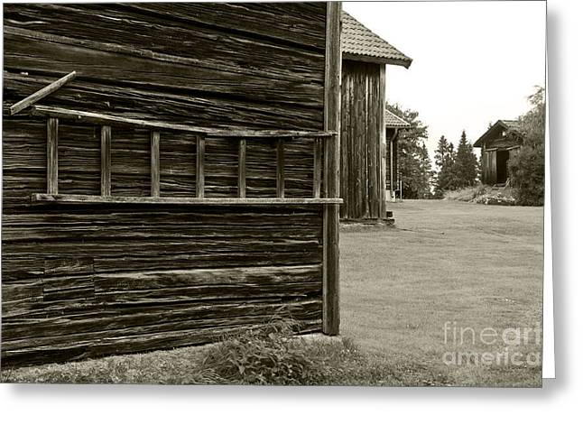 Barn Yard Greeting Cards - Old barns in Sweden Greeting Card by Micah May