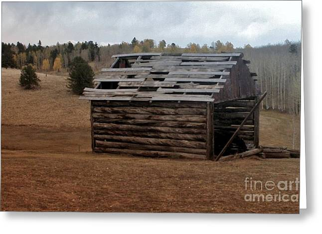 Old Cabins Greeting Cards - Old Cabin Greeting Card by Ellen Heaverlo