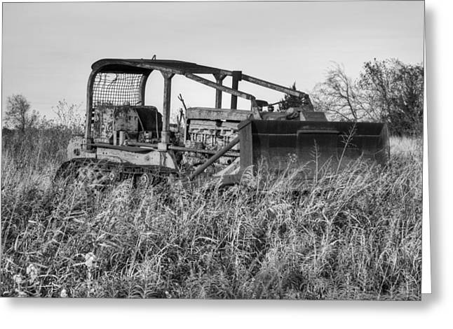 Dozer Greeting Cards - Old Cat II Greeting Card by Ricky Barnard