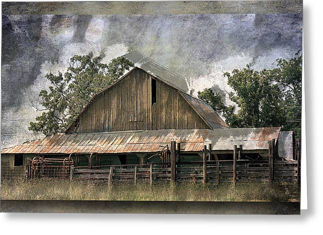 Tin Roof Greeting Cards - Old Cattle Barn Greeting Card by Barry Jones