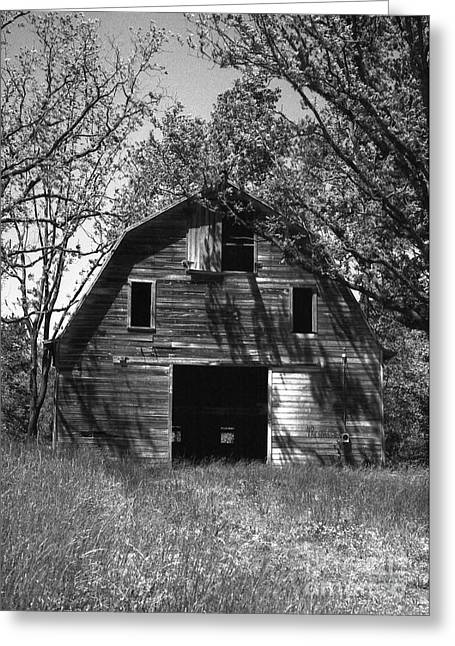 Farm Structure Greeting Cards - Old Cedar Barn Greeting Card by Richard Rizzo