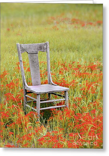 Left Alone Greeting Cards - Old Chair in Wildflowers Greeting Card by Jill Battaglia