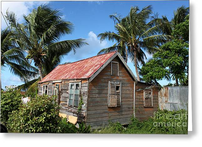 Old Chattel House 2 Greeting Card by Barbara Marcus