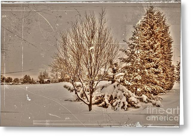 Winter Road Scenes Digital Greeting Cards - Old Country Christmas Greeting Card by Dan Stone