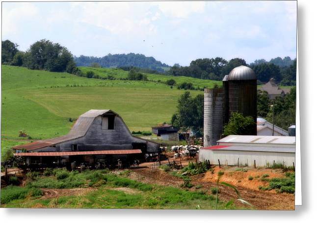 Tobacco Barns Greeting Cards - Old Dairy Barn Greeting Card by Karen Wiles