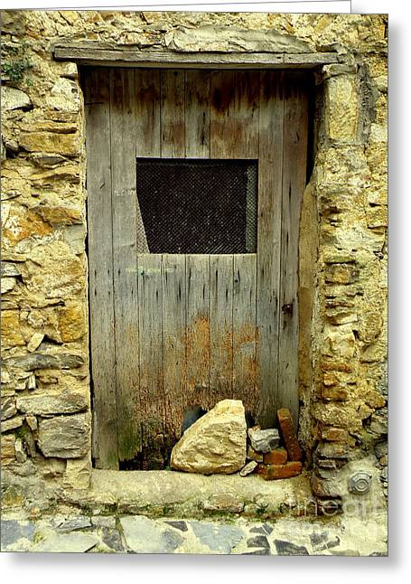 Lainie Wrightson Greeting Cards - Old Door with Stones Greeting Card by Lainie Wrightson