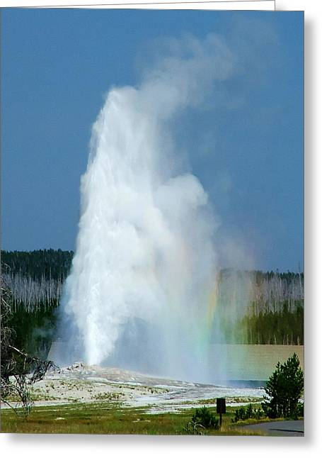 Old Faithful Greeting Cards - Old Faithful 1 Greeting Card by Ken Smith