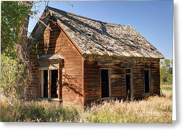 Old Cabins Greeting Cards - Old Farm Homestead - Woodland - Utah Greeting Card by Gary Whitton