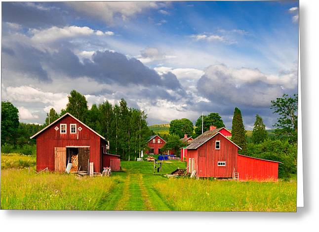 Outbuildings Greeting Cards - Old farm in Varmland in Sweden Greeting Card by Kathleen Smith