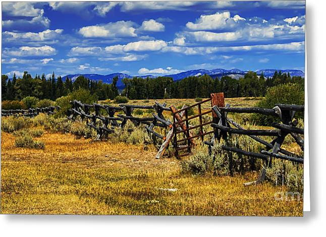 Outlook Greeting Cards - Old Fence Line Greeting Card by Robert Bales