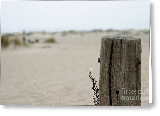 Fence Pole Greeting Cards - Old Fence Pole Greeting Card by Henrik Lehnerer