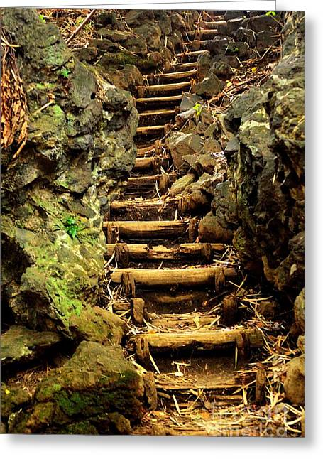 Wooden Stairs Greeting Cards - Old Forest Steps Greeting Card by Dean Harte