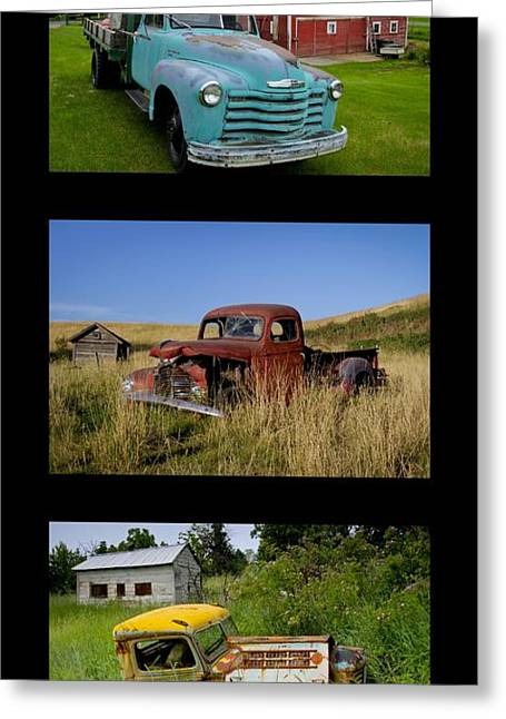Old Guys 6 Greeting Card by Idaho Scenic Images Linda Lantzy