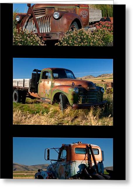Triplets Greeting Cards - Old Guys Trio 4 Greeting Card by Idaho Scenic Images Linda Lantzy