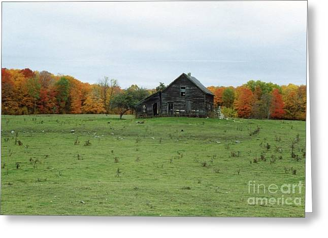 Michigan Pyrography Greeting Cards - Old Homestead Greeting Card by David Murray